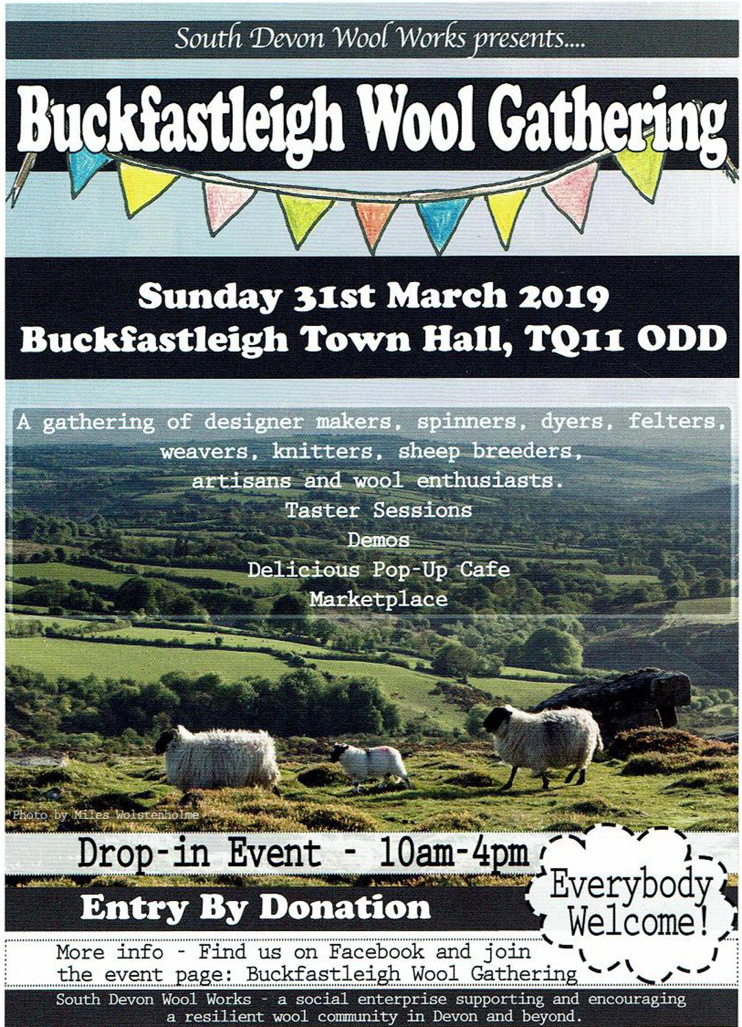 Buckfastleigh Wool Gathering, 31st March 2019